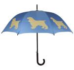 Umbrella-sm