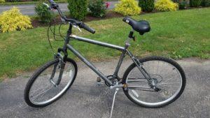 diamondback-nishiki-bike
