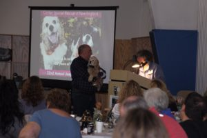 Lucas the Auction Poster Dog joins Gerry